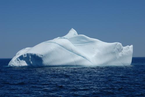 Newfoundlandjune2007_103